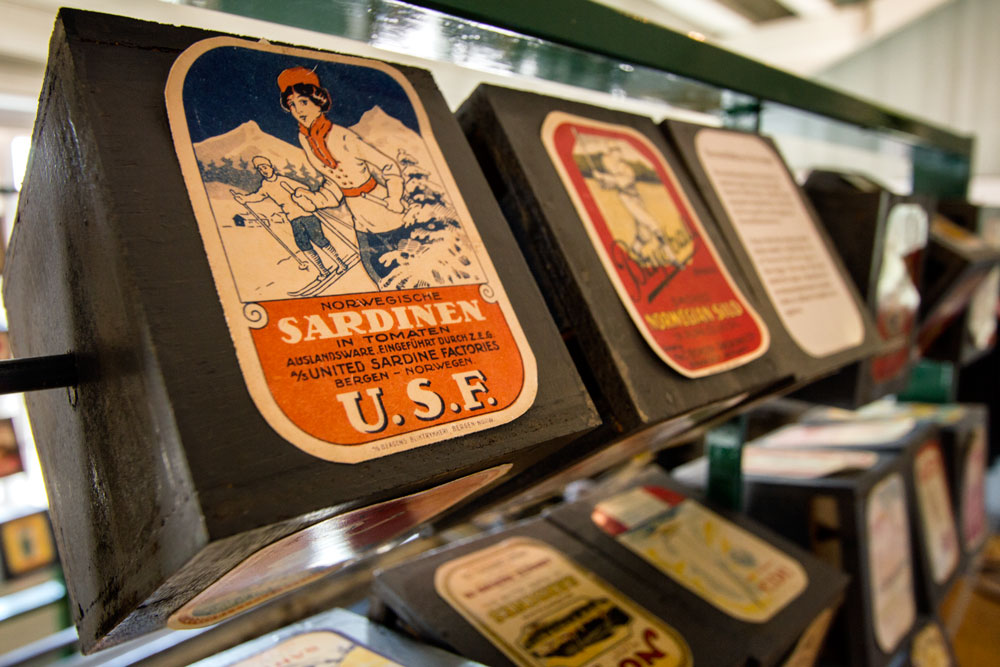 row of vintage sardine cans seen on visit to canning factory which is one of the best things to do in stavanger