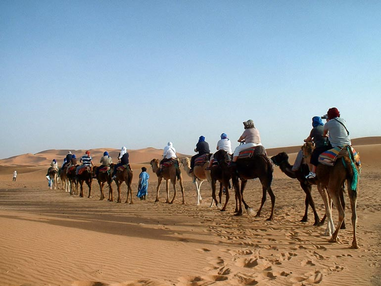 a group tour on a camel train in the desert