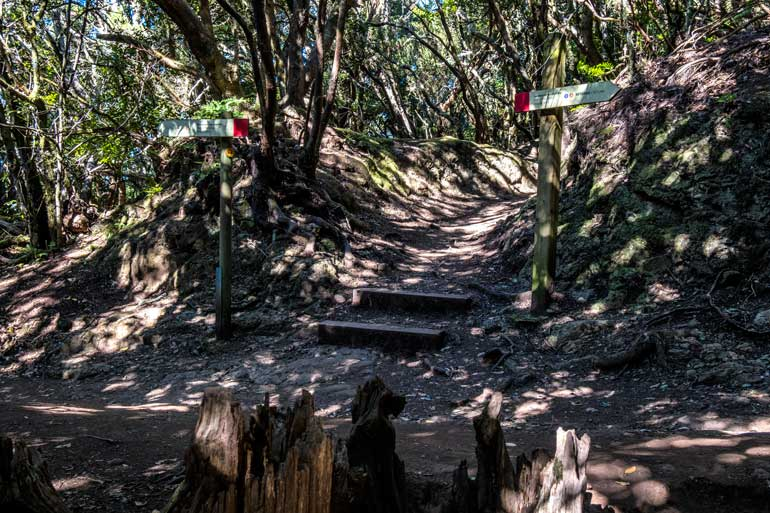 signs for the path of the senses in the anaga forest tenerife