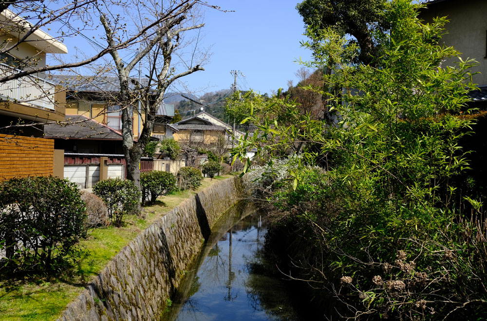 narrow river framed by trees and japanese buildings