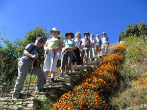 hikers who are part of a group travel for singles tanding on stone steps against a deep blue sky